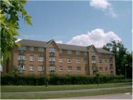 Flat in Aylward Drive, Stevenage...