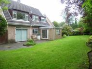 property to rent in Chiltern Close, Bushey...