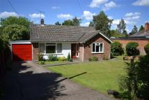 Detached Bungalow in Fir Tree Lane...