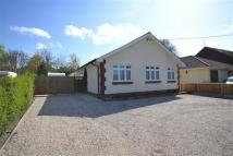 Detached Bungalow in Priory Road...