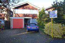 Detached property to rent in Thrift Wood, Bicknacre...