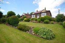 4 bed Bungalow in Springwell Village