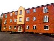 2 bed new Apartment in Hansen Gardens...