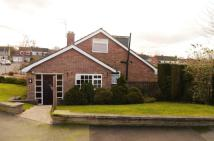 3 bedroom Semi-Detached Bungalow for sale in Laburnum Avenue...