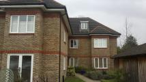 Ground Flat to rent in Woodgate Close, Cobham...