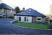 3 bed Bungalow to rent in Edenhurst...