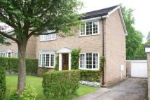 4 bedroom house in Park Avenue, Darley Dale...