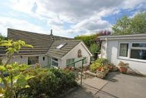 5 bedroom Bungalow in Oakerthorpe Road...