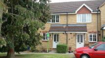Terraced house in Mallard Road...