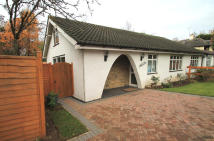Semi-Detached Bungalow to rent in Hartspring Lane, Watford...