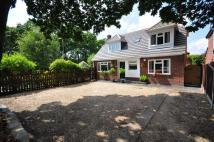 Detached Bungalow for sale in Titchfield Common