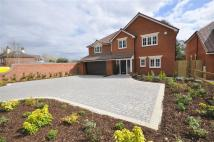 4 bedroom new home in Warsash