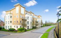 Elizabeth Apartment to rent
