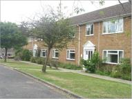 1 bedroom Studio apartment in Rowlands House...