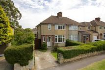 Collinwood semi detached property to rent