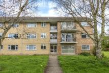 Glyme Flat to rent
