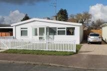 Detached Bungalow to rent in Queens Drive, Mildenhall