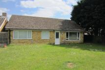 3 bedroom Detached Bungalow in The Pines, Holywell Row