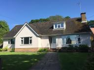 Detached Bungalow in Church Hill House...