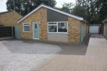 3 bed Detached Bungalow to rent in Arrowhead Drive...