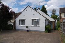 Northdown Road Detached house to rent