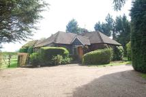 3 bed Detached Bungalow for sale in Narcot Lane...
