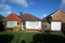 2 bed Detached Bungalow in Sedgmoor Gardens...