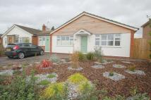 Detached Bungalow for sale in Carrington Avenue...