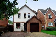 3 bed Detached house in 24 Stocken Close...