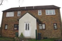 1 bedroom Maisonette to rent in Brighton Hill...