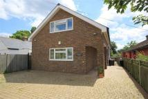 4 bed Detached house in Seasalter, WHITSTABLE...