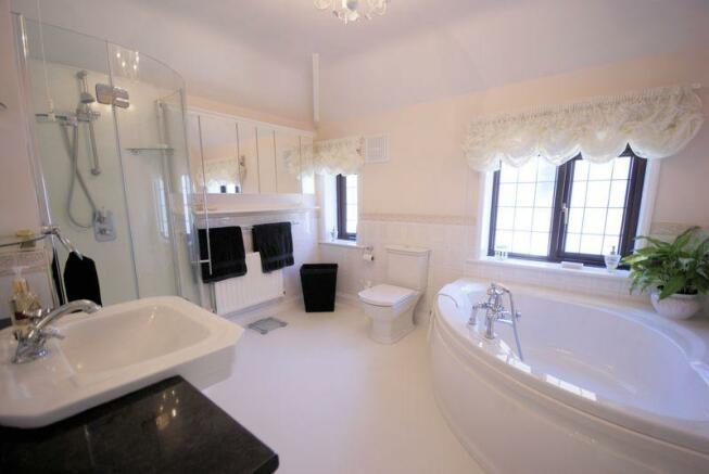 Bath/ Shower Room
