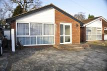 2 bedroom Bungalow in The Spinney, Potters Bar...