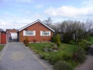 2 bed Detached Bungalow in Sedgefield Close...