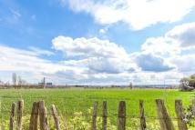 4 bedroom semi detached property for sale in Street Farm Cottages...