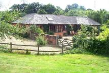 2 bed Detached Bungalow in Holt Road, Polstead...