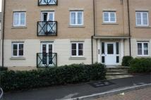 Flat to rent in Jacobs Close, Gt Cornard...