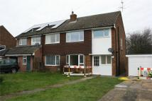 semi detached house to rent in Swanfield, Long Melford...