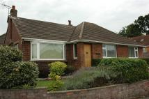 Detached Bungalow in Common Mead Avenue...