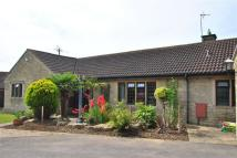 Detached Bungalow for sale in Freame Way, Gillingham...