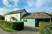 Cottage in Whitehill Cottage...