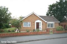 2 bedroom Bungalow in Norman Drive, Hatfield...