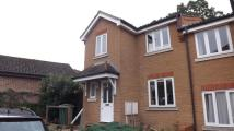 3 bedroom semi detached home to rent in Mulberry Close...