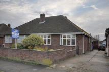 2 bedroom Semi-Detached Bungalow to rent in Chesterfield Drive - a...