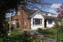 4 bed Bungalow to rent in Edwinstowe Road...