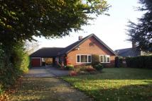 Bungalow to rent in Warren Hill Road...