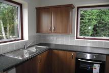 Bungalow to rent in Stowupland IP14