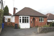Detached Bungalow to rent in Cockshutt Road...