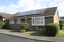 3 bed Detached Bungalow for sale in Holmshaw Grove...