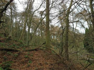 property for sale in 1.96 Acres Woodland, Osmotherley, Northallerton, DL6 3AL